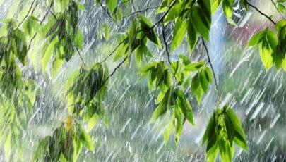 20.06.2017. Дождь и шквалистый ветер в Глубоком (видео)