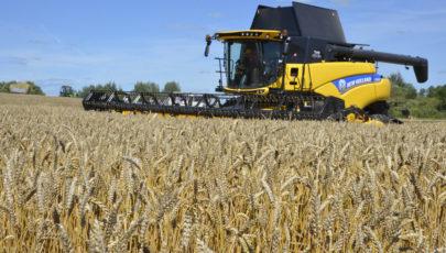 Глубокский район в числе первых завершил уборку зерновых и зернобобовых