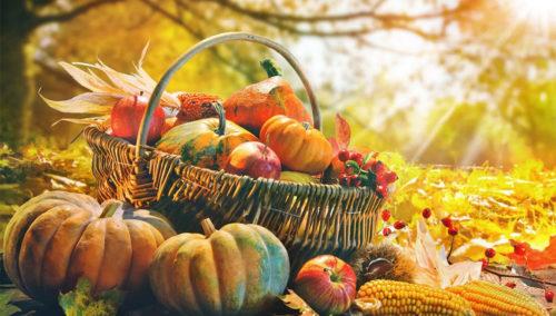 У Глыбокім пройдзе восеньскі кірмаш
