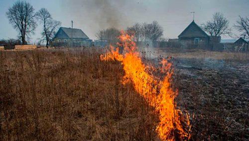 выжигание сухой травы
