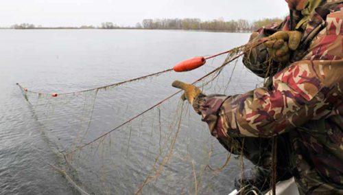 рыболовные сети