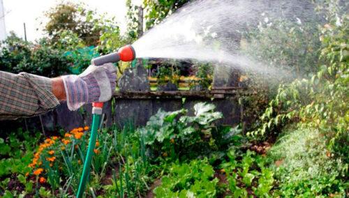 полив огородов