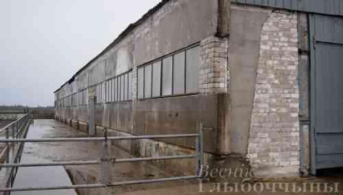Реконструирован комплекс по откорму скота в Глубокском районе