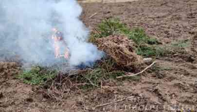 Спасатели напомнили глубочанам о недопустимости выжигания сухой растительности